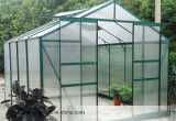 Ultra Clear Tempered Glasshouse Glass mit 3.2mm, 4mm, 5mm, 6mm Mistlite Nasiji Design