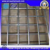 Hete DIP Galvanized Welded Wire Mesh voor Construction met (Ce en SGS)