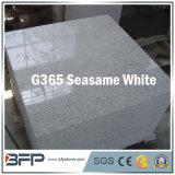 Chinesische Poliergranit-Fassade-Fliese für Außenwand/Fußboden in der weißen Farbe