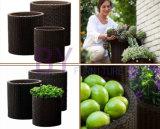 Bac de fleur Étage-Restant cylindrique de jardinage à la maison de rotin de PE de centrale succulente