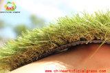 L'erba verde per il tetto supera i posti dell'interno ed esterni di svago