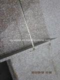 Mattonelle rosse del granito della pesca naturale della pietra G687 per il pavimento/parete/scale