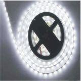 Rendere paricolare 60LEDs/M indicatore luminoso di striscia di 5630 SMD LED