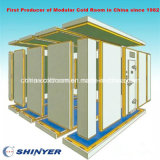 Mini cella frigorifera di Frozen per Meat e Fish