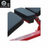 Regelbare Abodominal Raad Osh 060 Apparatuur van de Geschiktheid van de Gymnastiek de Commerciële