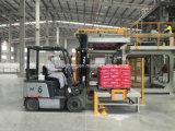 Volledig Automatische het Palletiseren Machine Op hoog niveau