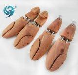 L'abitudine materiale di Wpod del cedro americano registra l'albero di legno del pattino