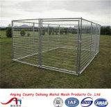 Canin à chien en poudre, course de chien, cage de chien, clôture de chien à vendre