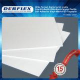 Plateau en mousse de PVC Promotion Publicité 5mm Epais Waterproof Foam Board