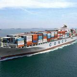 O melhor serviço de transporte do recipiente do oceano a Wellington, Nova Zelândia
