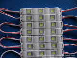 IP65는 5050의 주입 LED 모듈을 방수 처리한다