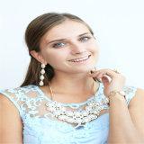 Insieme acrilico dei monili di modo dell'anello dell'orecchino del braccialetto della collana della perla della nuova resina di disegno