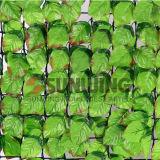 Загородки листьев ПЛЮЩА Boxwood сада изгородей изгородь пластичной искусственная