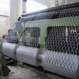 PVC esagonale della rete metallica e galvanizzato