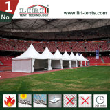 10 dalla tenda del baldacchino dell'alluminio 10 per la fiera commerciale e la mostra