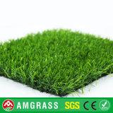Дерновина спортивной площадки футбола искусственние и трава сада