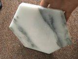 Práctico de costa de mármol blanco de la taza de