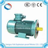 Motor de aço assíncrono trifásico de Sheel para a bomba da emulsão da mina de carvão