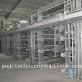 La volaille de couche de poulet met en cage le système de ventilation de matériel de ferme