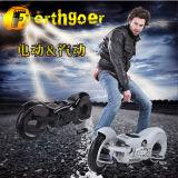 scooter de gaz de 49cc Gwheel Bushpig