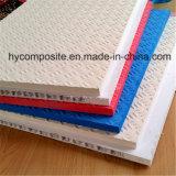 Panel FRP poliéster reforzado Composite Honeycomb Andamio