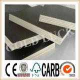 1220*2440mmのポプラのコア防水合板の構築の型枠の使用法