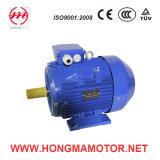 Motor elétrico de indução assíncrona AC de 3hm