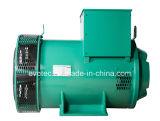 Generatori sincroni con il pmg per il motore diesel