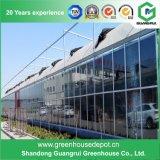 Serra isolata vetro più poco costoso professionale caldo di vetro Tempered di vendita