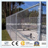Heiße Verkäufe galvanisierten Kettenlink-Zaun
