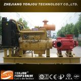 Pompe centrifuge à plusieurs étages de moteur diesel de transfert d'eau de mer de D