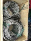 Tipo de acero inoxidable de malla de cable virola