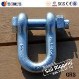 Ons typen de Hete Gegalvaniseerde Sluiting SR-G2150-J van de Veiligheid Dee