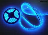 Alto indicatore luminoso al neon della corda della flessione di luminosità 5050 LED