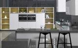 Hoog polijst het Meubilair van de Keuken van de Lak met de Kabinetten van het Vernisje van het Hout (zz-003)