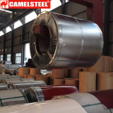 Bobina d'acciaio ricoperta zinco principale di qualità Dx51d