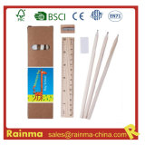 Eco Stationery per School e Office Supply