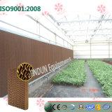 Пусковая площадка 7090 Черн-Coated Brown охлаждая для парников цветков