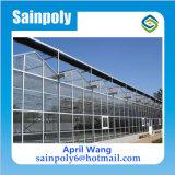 Heißer Verkaufs-Glasgewächshaus für landwirtschaftliches