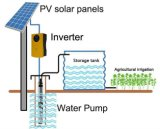 van Grid Inverter Without Battery met Zonnepaneel en AC Pump Conclude Solar Pumping System