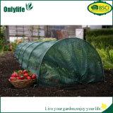 Tomate d'Onlylife/serre chaude végétale/Growbag avec la couverture renforcée intense