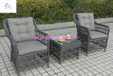Sofá seccional del patio trasero Hz-Bt35 de la rota del patio del sofá de mimbre al aire libre de los muebles fijado - mar azul