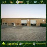 StahlStructrue Fertigreparatur-Lager (LS-S-007)