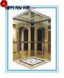 630kg, 800kg, 1000kg Capacity Gearless Elevator