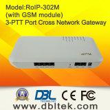 Radio over de Gateway van het dwars-Netwerk van Internet en GSM roIP-302M