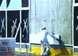 Machine de moulage de bloc de Fangyuan ENV Styropor