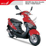 50cc Scooter CEE