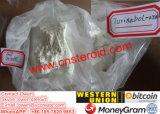 Порошок стероидной инкрети Steranabol Macrobin Turinabol ацетата Clostebol