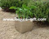 FO-9004 Pot van de Bloem van de Tuin van het roestvrij staal de Kubieke voor Decoratie