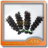 Cheveux non-traités de Brésilien de la vague 4A de cheveux